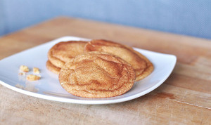 Chewy & Soft Snickerdoodles