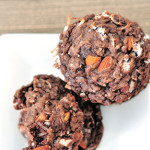 One-Bowl-Cocoa-Coconut-Cookies Greek Yogurt
