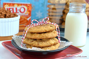 Gingerbread-pudding-cookies-5